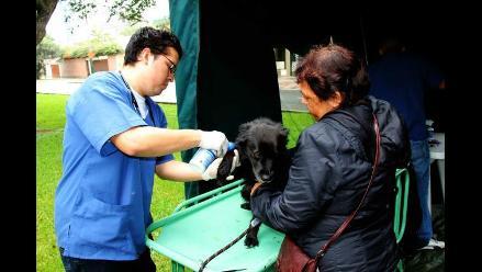 Campaña de Registro Canino y Atención Veterinaria este 7 de julio