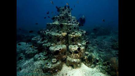 Cientos de científicos urgen mayor protección de los corales