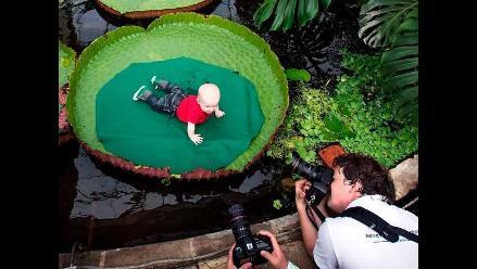 Bebés son fotografiados en plantas flotantes