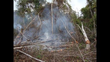 Bomberos ecológicos reportarán daños de incendio cerca a Choquequirao