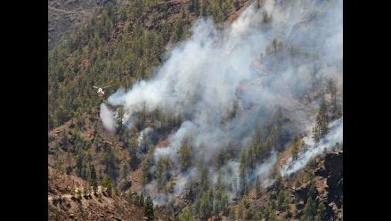 Rusia: Más de 23.000 hectáreas de bosques arden en Siberia