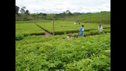 Ministerio de Agricultura financiará obras agrarias en Apurímac