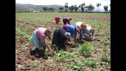 FIDA aprueba préstamo de US$ 20 millones para desarrollo rural