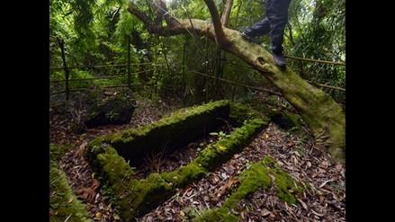 Hallan tumbas de mil años de antigüedad en la selva de Filipinas