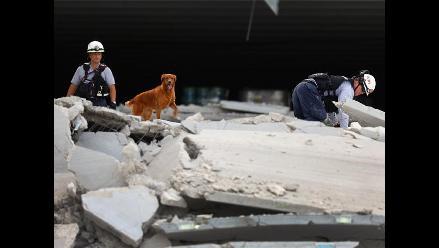 Intensa búsqueda de sobrevivientes tras derrumbe de construcción en Miami