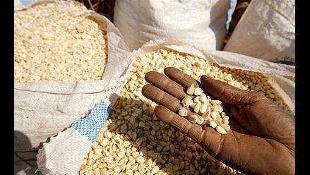 Perú y Brasil encabezan países que combaten el hambre en AL