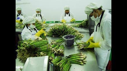 Perú presente en mayor feria del mundo de frutas y vegetales