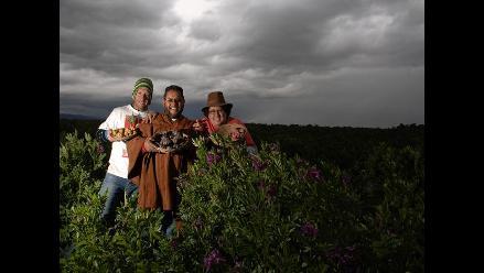 Edilberto Soto: difundiendo la biodiversidad de las papas nativas