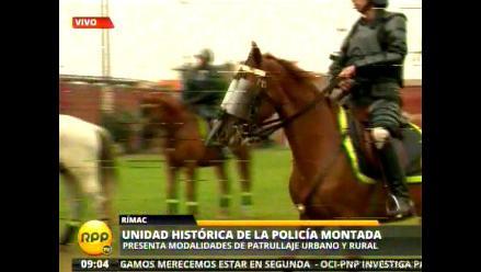 Conozca el trabajo de los caballos de la Policía Montada