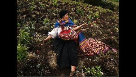 Fototierra 2012: promover la reflexión sobre cuidado del medio ambiente