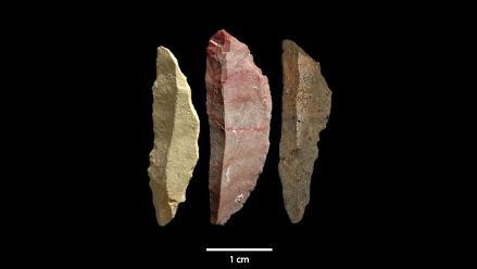 Homo Sapiens usaba herramientas sofisticadas hace 71.000 años