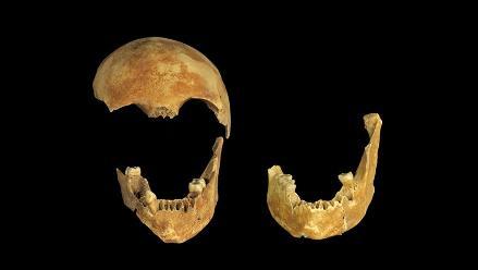 Descubren esqueletos humanos en pozo Neolítico de 8.500 años