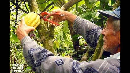 Piura: Cacaoteros de Palo Blanco recibieron Premio Integración 2012