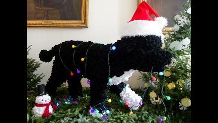 El perro de los Obama, protagonista de la Navidad en la Casa Blanca