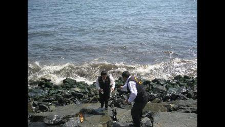 Áncash: Filtraciones producirán cambios en ecosistema marino