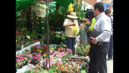 Huancayo: Impulsan cultivo de plantas ornamentales con feria forestal