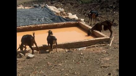 Piura: Cancelan inscripción de empresa minera en Las Lomas