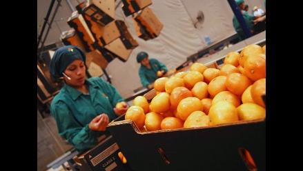 Agroexportaciones peruanas crecerán en US$500 millones por TLC con UE