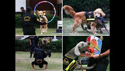 Unidad canina de la Policía en simpática exhibición