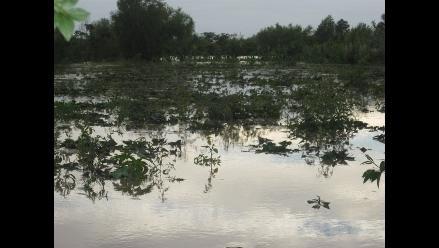 Chanchamayo: Lluvias afectan 35 familias nativas en Perené