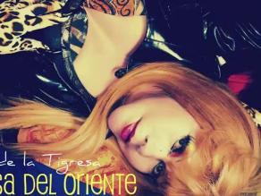 Tigresa del Oriente inicia el 2013 presentando nuevo tema