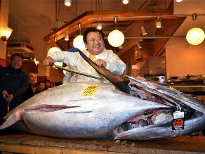 Atún rojo de 222 kilos es vendido en $1.77 millones