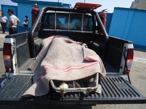 Cusco: Policía cree que turista ruso falleció por sobredosis de droga