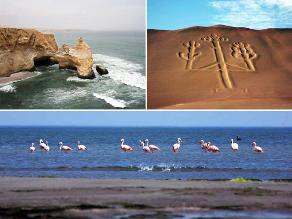 Visite los atractivos turísticos de la Reserva Nacional de Paracas
