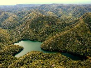 Piden que Zona Reservada Sierra del Divisor sea Parque Nacional