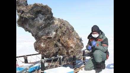 Hallan mamut congelado con sangre líquida en el Ártico
