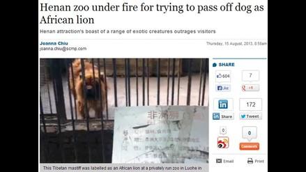 Zoológico chino