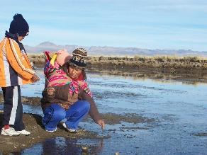 Senamhi advierte temperaturas de hasta -20 grados en sierra sur