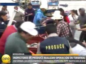 Pescadores artesanales de Ilo preocupados por restricciones de extracción