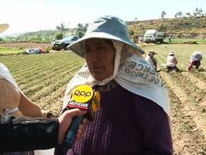 RPP Noticias llega a Uchumayo, donde se registran problemas en el agro
