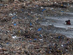 ONG Vida: Basura y desechos de construcción tirados al mar dañan ecosistema