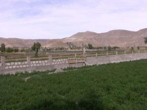 Arequipa: 5 mil hectáreas de áreas verdes perdidas por construcciones