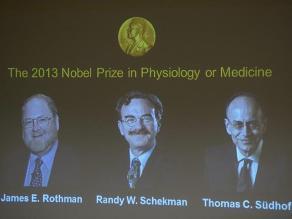 Dos estadounidenses y un alemán ganan Nobel de Medicina 2013