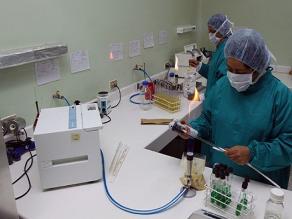 Descubren poder innato de mamíferos para matar virus