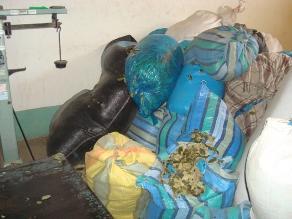 Andahuaylas: Decomisan más de 30 kilos de hoja de coca