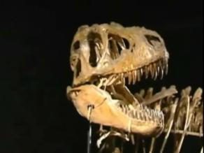 Esqueleto gigante de dinosaurio saldrá a subasta en el Reino Unido