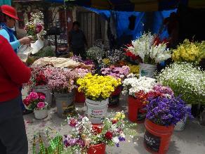 La Oroya: Comerciantes elevan el precio de las flores y cruces
