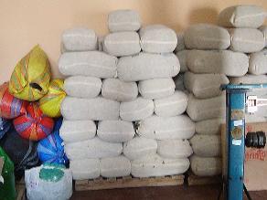 Incautan 3 toneladas de hoja de coca en Puno