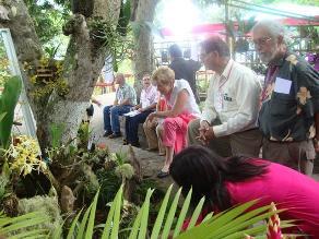 Moyobamba: Más de mil especies de orquídeas se exhiben en festival