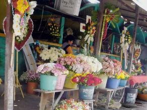 Puno: precio de flores incrementa en 100 % por Día de los Muertos