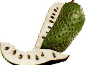 La guanábana no cura el cáncer, pero inhibe algunas células cancerígenas