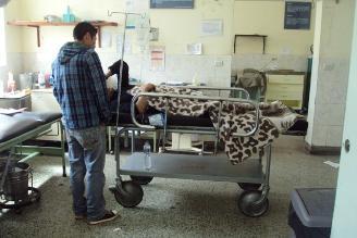 Quillabamba: Dos alumnas intentan quitarse la vida con veneno