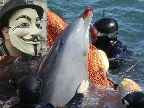 Anonymous amenaza con desatar su ´ira´ si Japón no detiene caza de delfines