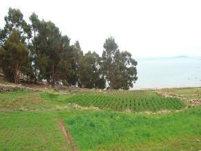 CultiVida: Perú con gran potencial de tierras agrícolas