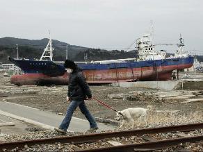 Terremoto que azotó Japón el 2011 afectó a la gravedad terrestre