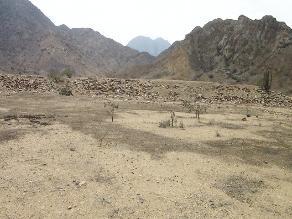 Lambayeque: En santuario pre cerámico rendían culto a la boa